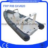 Fiberglass Hull FRP Rib Boat Sxv620 with PVC/Hypalon Tube