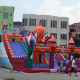 Commercial Inflatable Slide in Outdoor