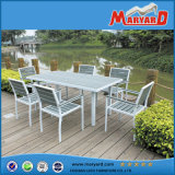 Aluminum Frame Polywood Dining Table and Chair