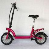 "12"" Kenda Tire Folded Lithium Electric Dirt Bike"