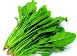 Good Quality Free Sample Factory Supply Directly Spinach Powder Min Order: 1kg