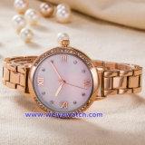 Custom Steel Wrist Watch Wristwatch of Japan Quartz Movement (WY-17002C)