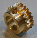 Precision Customized Brass Electric Motor Worm Gear, Brass Gear Worm