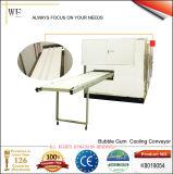 Bubble Gum Cooling Conveyor (K8019054)