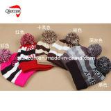 Crochet Skull Knitted Jacquard Beanie Hats (QZ-LW-090)