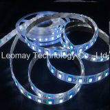 Brand OEM DC24V Waterproof RGBW 5050SMD LED Kit Strip Light