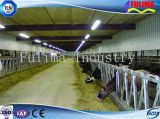 Prefabricated Steel Structure Cattle House for Farm (FLM-F-017)