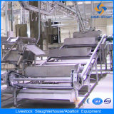 Floor Type Cattle Viscus Cutting and Inspecting Machine
