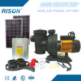 Cheap Solar Pump for Swimming Pool with 5 Years Warranty
