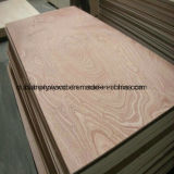 Commercial 19mm Shandong Plywood for Construction
