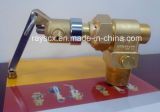 Ig-541 Fire Suppression System -Cylinder Valve 2
