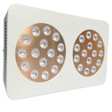 Apollo 60*3W Agriculture Greenhouse LED Grow Light