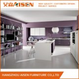 Mixed Color Shaker Vivyl Wrapped Kitchen Cabinet for Show Room