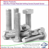 Half Thread and Full Threaded High-Strength Hex Bolt Grade 5.8