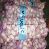 Competitive Fresh White Garlic with New Crop