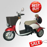 Commercial 3 Wheels Electric Disabled Scooter, Electric Mobility Tricycle for Safe Driving (TC-014)