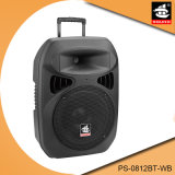 12 Inch Portable Battery Powered Active Multifunction Bluetooth Speaker