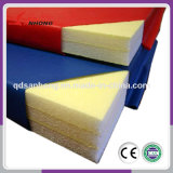 Professional Gymnastics Mats/Gym Mats/Folding Gymnastics Mats with High Quality