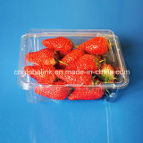 Clamshell Blister Plastic Fruit Packaging Container for Strawberry Blueberry Tomatoes 500 Gram