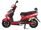 Electric Motorbike with 800W 48V/20ah