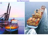 Consolidate Shipping Service for Shipment From Shanghai to Seattle, Oakland, Los Angeles Shipping