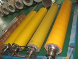 Pre-Painted Aluminium Roll for Building Material