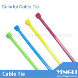 Colorful Cable Ties in Different Size in Nylon