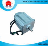 80bl3a140 310VDC 500W 1.6n. M 3000rpm Electric Motor