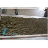 Honeycomb Paper Door Core Manufacturer