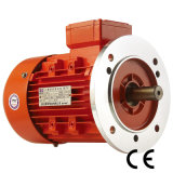 2 Poles Asynchronous Three Phase Electric Motor for Gear Box
