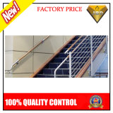 Stainless Steel Stair Railing with Wall Handrail