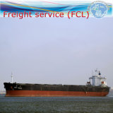 Shipping Forwarder / Custom Clearnace / Container From China to Calgary/Edmonton