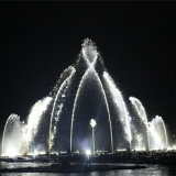 Multimedia Music Water Fountain for Villa/Hotel/Plaza (991A1360)