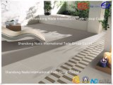 600X600 Building Material Ceramic Light Grey Absorption Less Than 0.5% Floor Tile (G60407) with ISO9001 & ISO14000