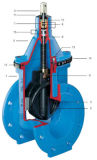 Resilient Seated Gate Valve with Wedge Guide