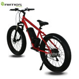 36V 350W Fat Tire Beach Electric Bike with Panasonic Battery