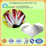 High Qualiti Chicory Root Extract Inulin