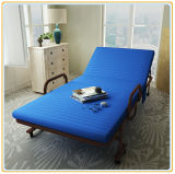 Functional Hospital Accompany Bed, Guest Folding Bed (190*100cm Blue)