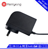 Cig 023 Report Argentina 6V 4A 24W Adapter/Power Adapter Wholesale