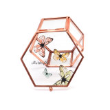 Wholesale High Quality Gift Glass Jewelry Packaging Box Jb-1070