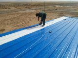 Quality Standard Steel Material for Wall and Roof Sandwich Panels