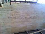 Unfilled White Beige Travertine for Tile Slab