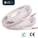 Factory 300LEDs /60LED/M Warm White SMD2835 LED Strip Light