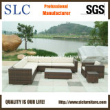 Outdoor Furniture/Wicker Furniture/Rattan Sofa Set (SC-B6018)