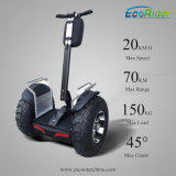 Electric Scooter New Products 2016 Ecorider Lithium Battery Brushless DC Motor 2 Wheel Mini Electric Scooter 4000W