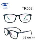 High Quality New Tr90 Eyewear Frame (TR558)