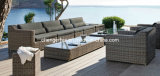 Outdoor Furniture /Patio Furniture/ Garden Furniture (DH-1056)