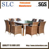 Rattan Dining Set/Outdoor Dining Set (SC-A7270)