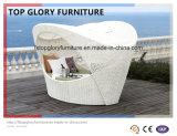 Wicker Daybed Outdoor Sun Bed Chaise Lounge Day Bed (TGLU-03)
