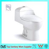 Ceramic America Standard Toilet